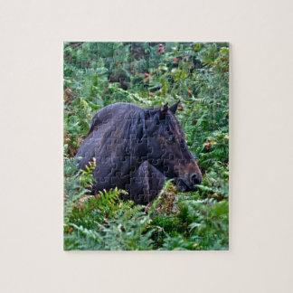 Nuevo potro negro raro del bosque - caballo salvaj puzzle