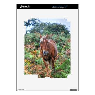 Nuevo potro salvaje del bosque que pasta en calcomanías para iPad 2