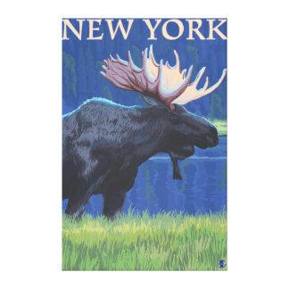 Nuevo YorkMoose en el claro de luna Impresiones En Lienzo Estiradas