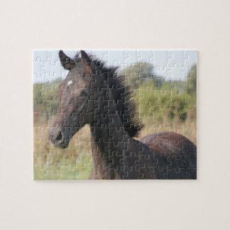Nuevos potro caballo puzzle