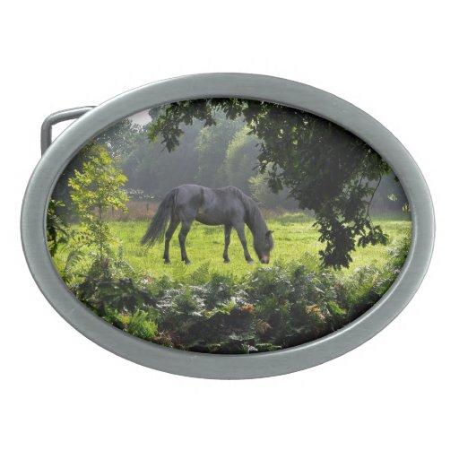 Nuevos potro del bosque y bosque negros que despej hebillas cinturón ovales
