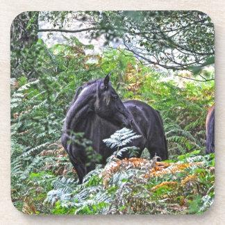 Nuevos potro y bosque negros Reino Unido del bosqu Posavasos De Bebidas