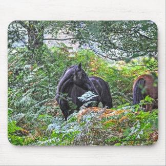 Nuevos potro y bosque negros Reino Unido del Tapetes De Ratón
