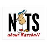 Nuez 2 del béisbol postales