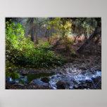 Nuez Creek-3 Impresiones