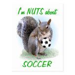 Nuez del fútbol tarjeta postal