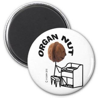 Nuez del órgano imán redondo 5 cm