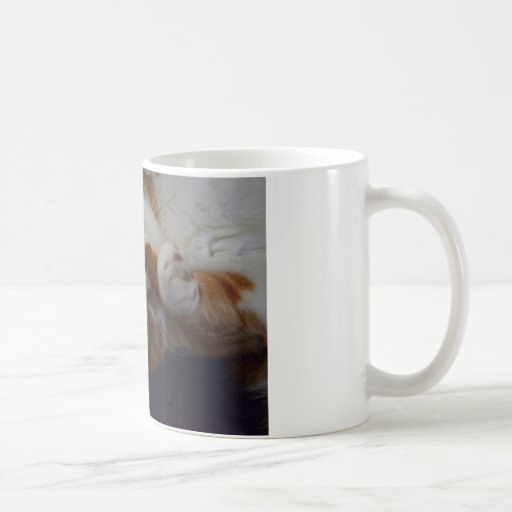 Nuez moscada moscada juguetona tazas de café