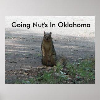 Nuez que va en Oklahoma Póster