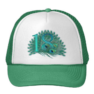 Number  17 / age / years / 17th birthday template trucker hat