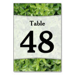 [ Thumbnail: Number; Green Hedge Shrub Type Plant Photograph Table Number ]