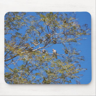 Number Of Birds In Tree, Mousepads