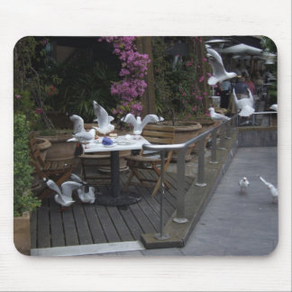 Number Of Pigeons On The Table For Food Mousepads
