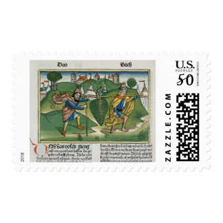 Numbers 13 23 The Grapes of Eschol, from the 'Nure Postage