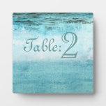 Número azul de la tabla de la playa de las olas oc placa de plastico