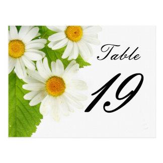 número de la tabla de la margarita blanca tarjeta postal