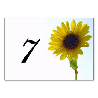 Número de la tabla del girasol