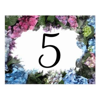 Números de la tabla de marco de la flor del Hydran Tarjetas Postales