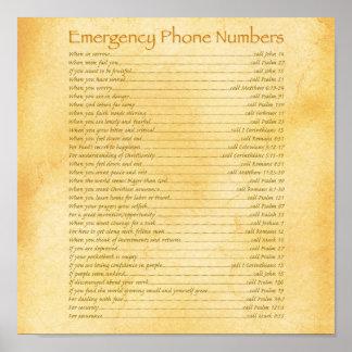 Números de teléfono de la emergencia póster