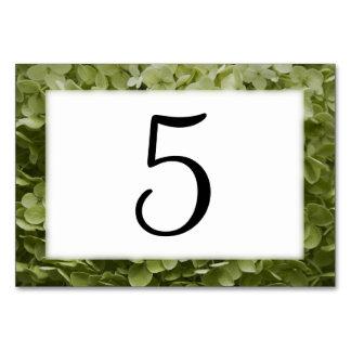 Números florales de la tabla del Hydrangea verde