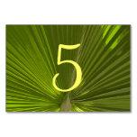 Números tropicales de la tabla de la palma