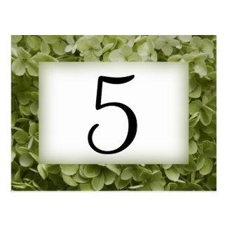 Números verdes de la tabla de la flor del tarjeta postal