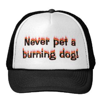 ¡Nunca acaricie un perro ardiente Gorro