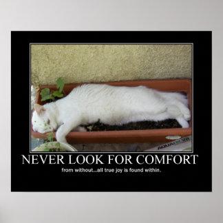 Nunca busque las ilustraciones del gato de la como póster