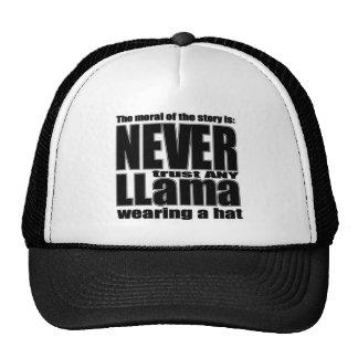 Nunca confíe en una llama en un gorra