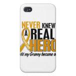 Nunca conocía a un cáncer del apéndice de la abuel iPhone 4 cobertura