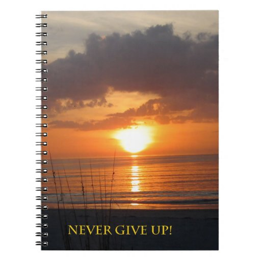 Nunca dé para arriba la playa anaranjada de la pue cuadernos
