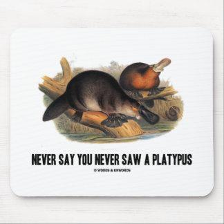 Nunca diga que usted nunca vio un Platypus Alfombrillas De Ratones