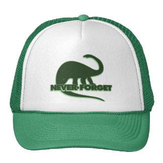 Nunca olvide los dinosaurios gorros bordados