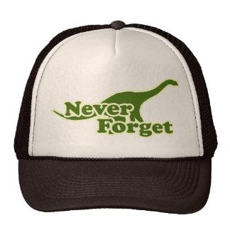 Nunca olvide los dinosaurios gorras