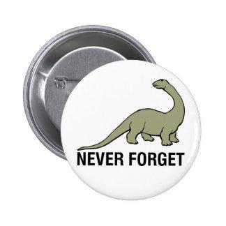 Nunca olvide pins