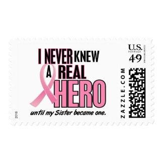 Nunca sabía un ROSA del héroe 2 (la hermana) Sello