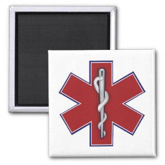 Nurse Gift Magnets