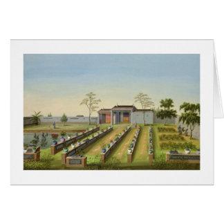Nursery Garden, c.1820-40 (w/c on paper) Card