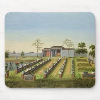 Nursery Garden, c.1820-40 (w/c on paper) Mouse Pad