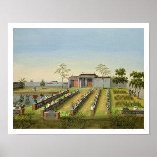 Nursery Garden, c.1820-40 (w/c on paper) Poster