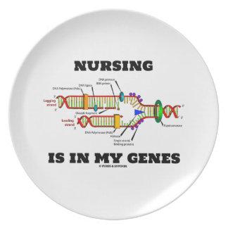 Nursing Is In My Genes (DNA Replication) Melamine Plate