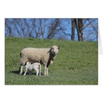 Nursing Lamb Card