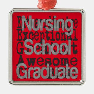 Nursing School Graduate Extraordinaire Metal Ornament