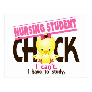 Nursing Student Chick 1 Postcard
