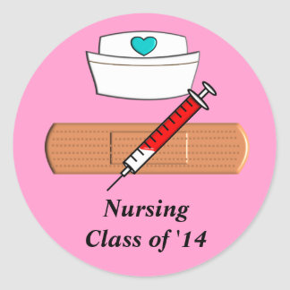 Nursing Student Class of 2014 Stickers Pink