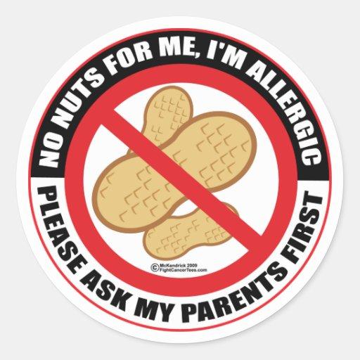 Nut Allergy Classic Round Sticker