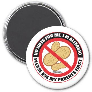 Nut Allergy Magnet