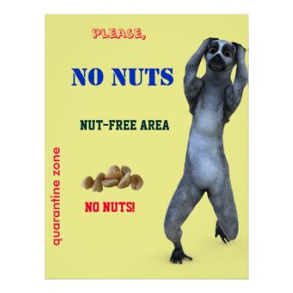 Nut-free Zone Poster