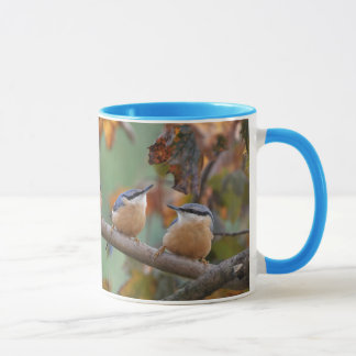 Nuthatch collage mug