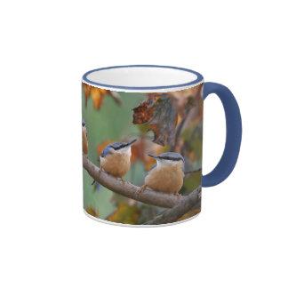 Nuthatch collage ringer coffee mug